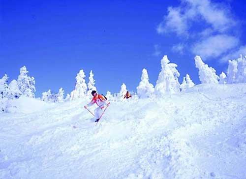 日本青森县八甲田滑雪场
