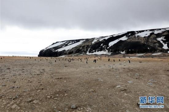(第34次南极科考)(7)中国科考队参与修护南极历史遗迹建筑