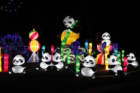 Lanterns light up Beijing rose park for Spring Festival(2)