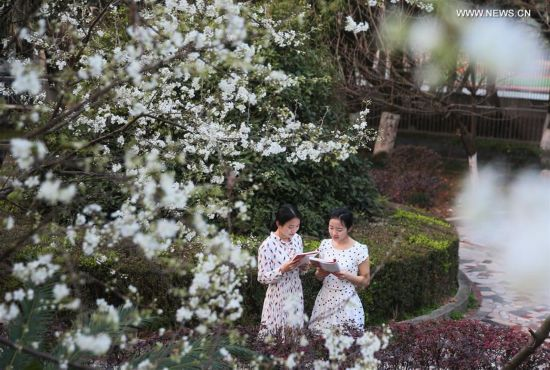 Spring returns to Chinese land as temperature rises in recent days (2)